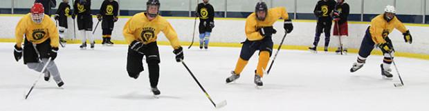 What's New in HockeyU 2019!
